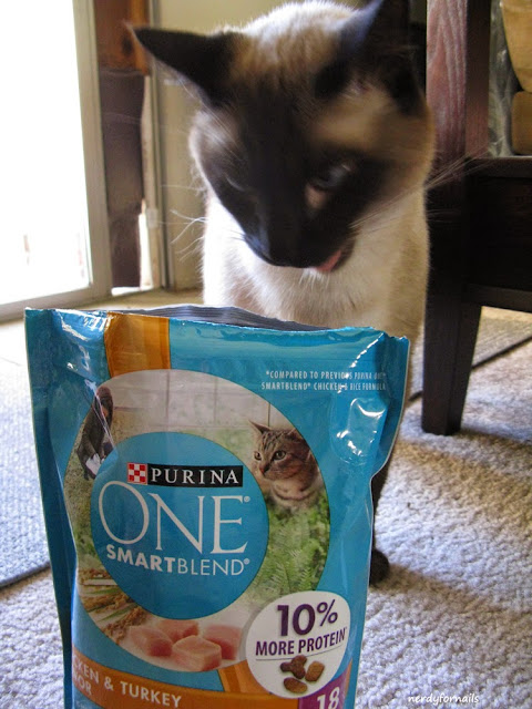 Purina One Cat Food Influenster #OneSwitch Siamese