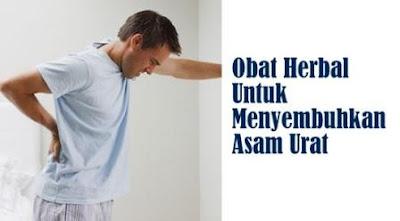 obat tradisional ampuh asam urat n kolesterol