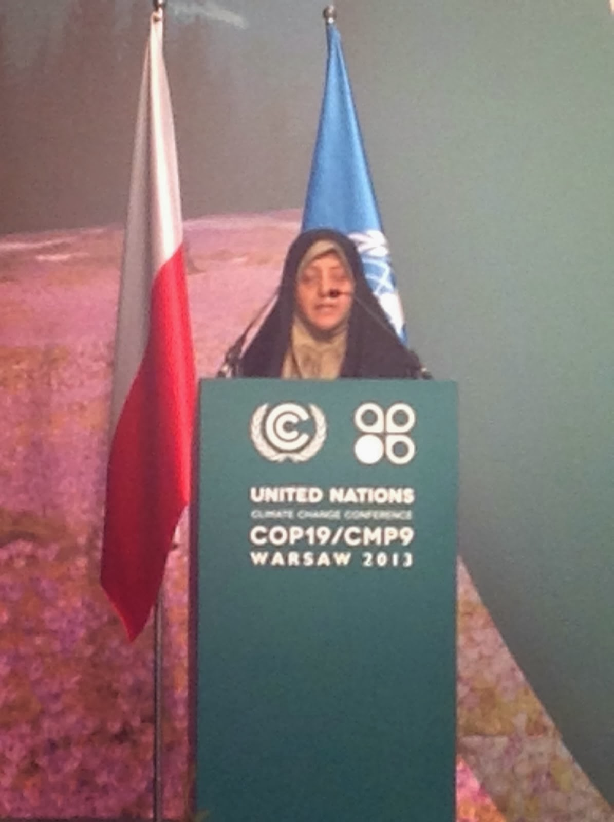 Address to the COP19 Plenary