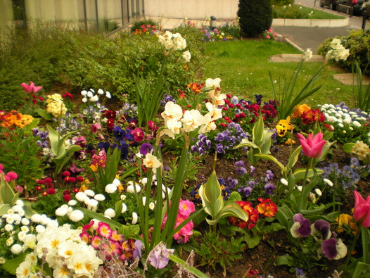 Luz en casa jardineria luz en casa jardineria arte y for Utilisima jardineria