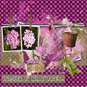 lo 3 Lovely nature flowers