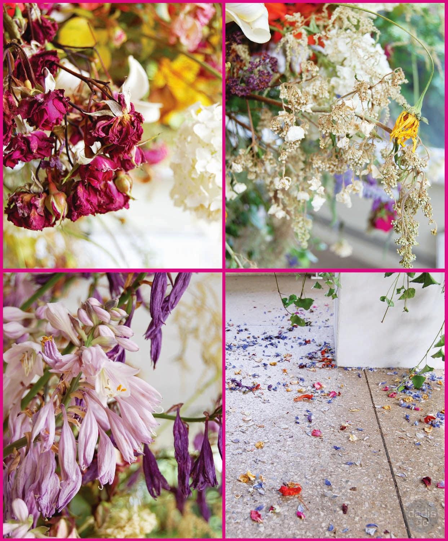Rundāles nots Botāniskā dārza ziedu ballē