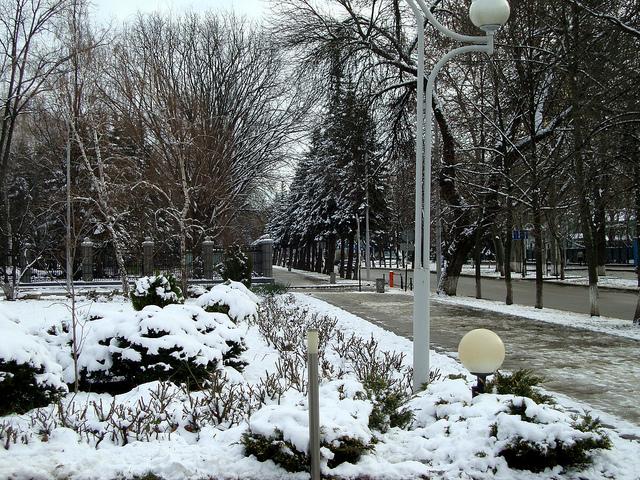 mùa đông nước đức