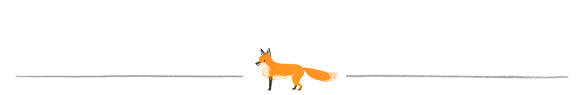 Don't Be Outfoxed!