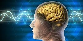 Psychiatrie 2013: Fast die Hälfte der Bevölkerung hat eine krankhafte Diagnose