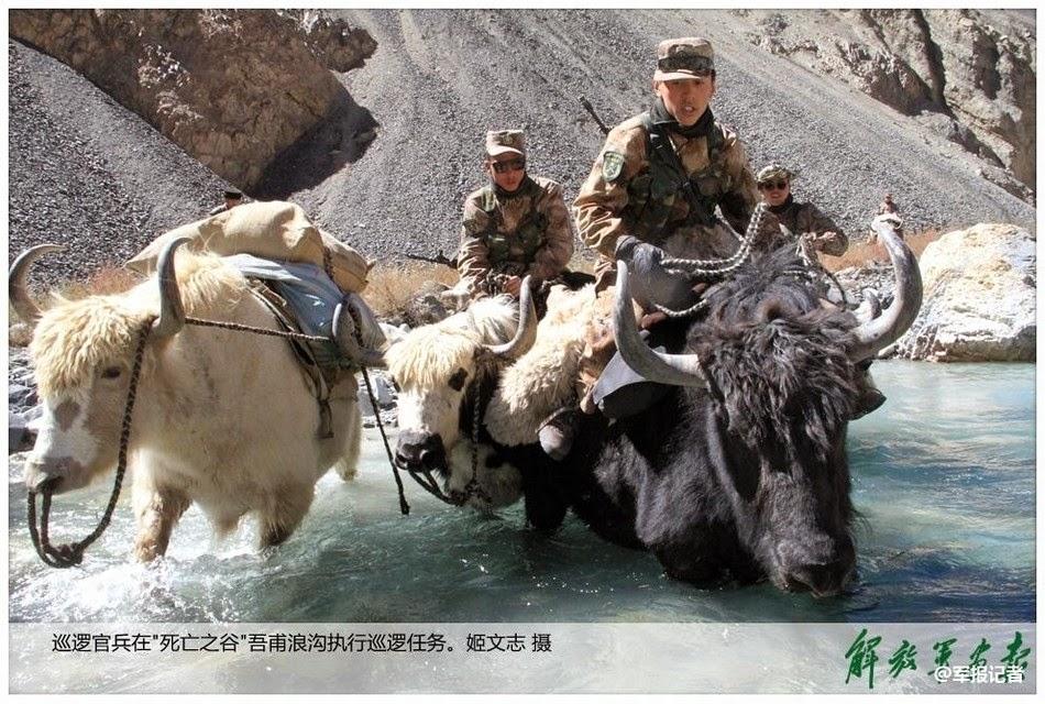 Chinese%2BPLA%2BYak%2Bcavalry%2Bpatrol%2