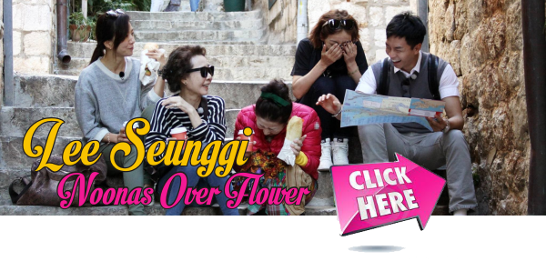 Watch Noonas Over Flower