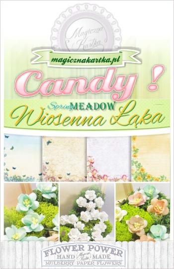 http://www.magicznakartka.blogspot.com/2014/03/wiosna-zapukaa-do-magicznej-kartki.html