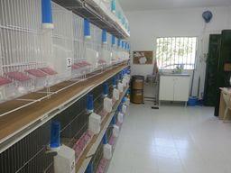 ampilando instalaciones para 150 parejas este año2012/2013