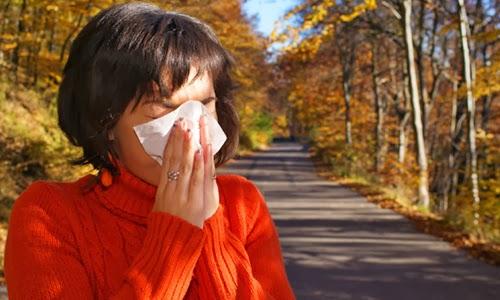 Masalah Alergi