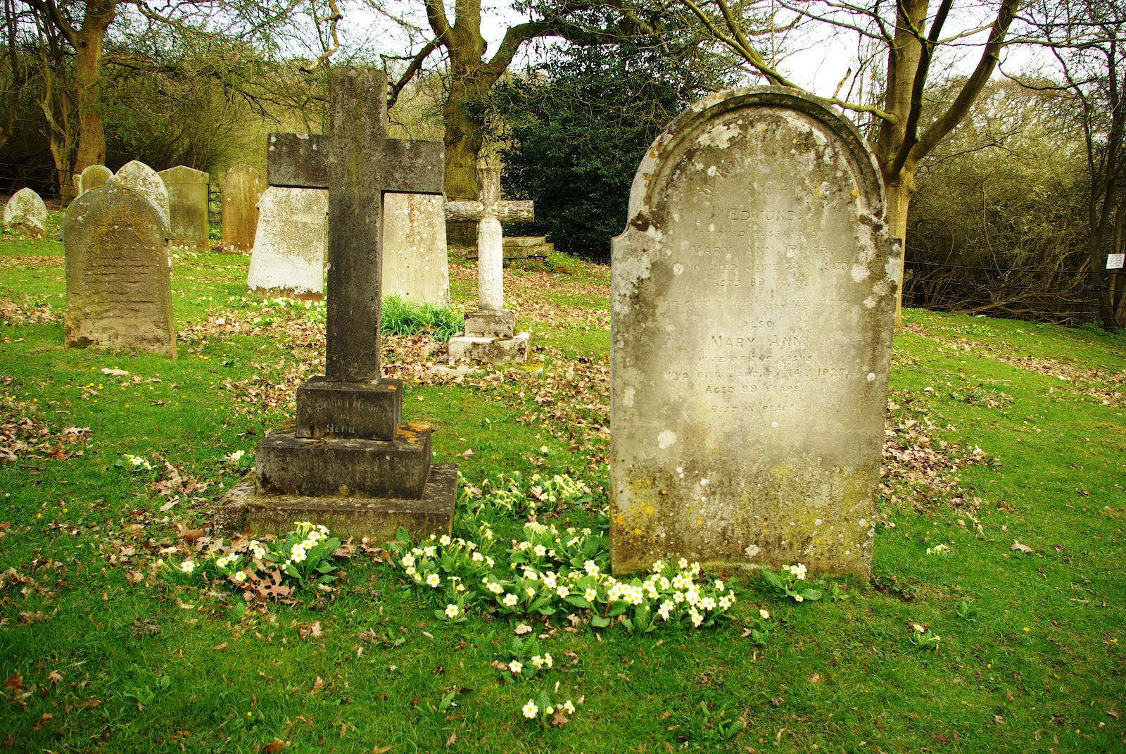 elegy written in a country churchyard essay topics Free essay: elegy written in a country chrchyard thomas gray's elegy laments the death of life in general while mourning long gone ancestors and exhibiting.