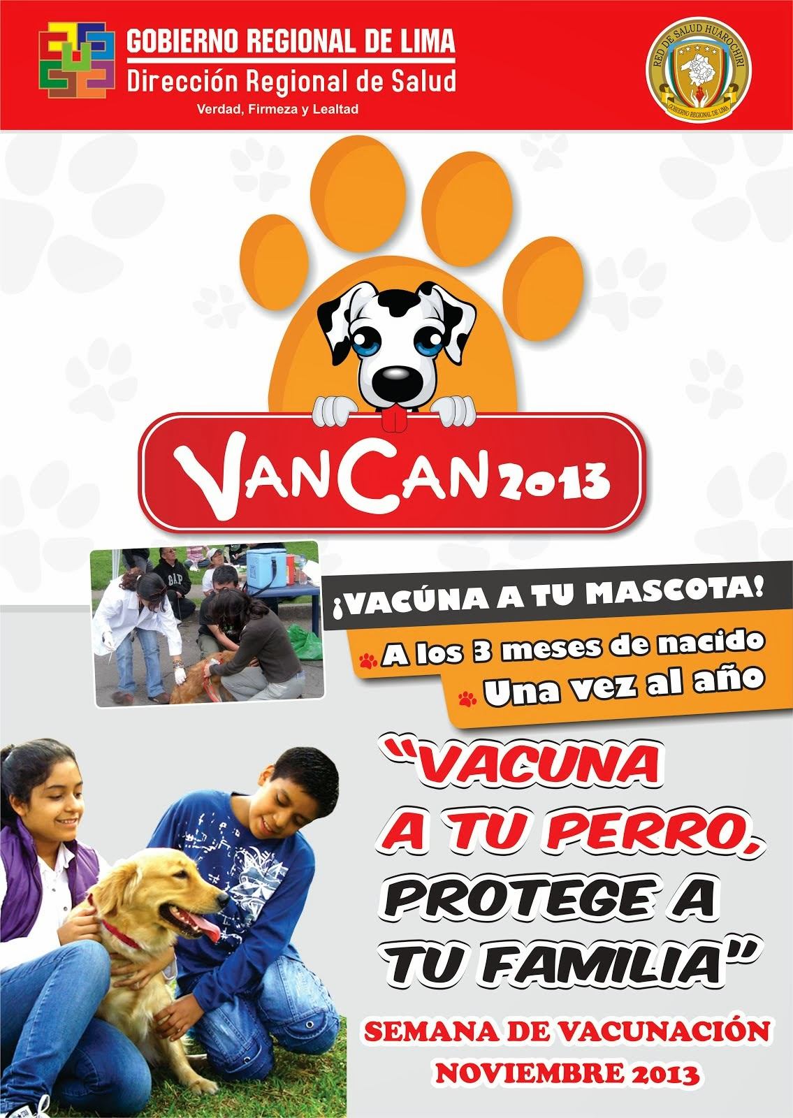 van can 2013