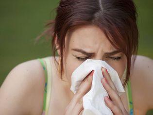 allergie+respiratoire