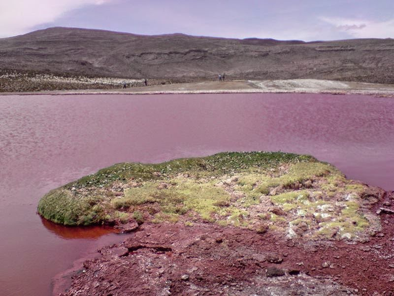 The mysterious beauty of the Red Lagoon Camiña is located in the interior of Iquique Province, in northern Chile and around 12,100 ft above sea level, lies a strange Red Lagoon.