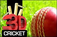 3D Cricket Play Online Game
