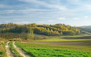 http://fotobabij.blogspot.com/2015/11/polna-droga-wsrod-roztoczanskich-wzgorz.html