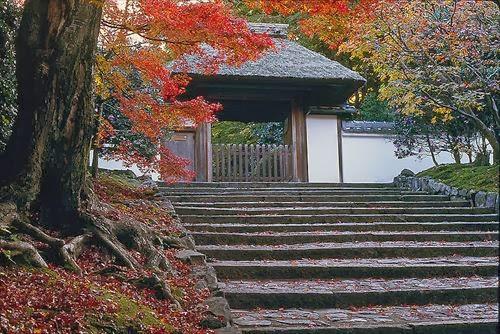 安楽寺(あんらくじ)