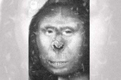 DNA pode provar existência do Pé Grande