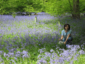Bluebells- Color Me Happy!