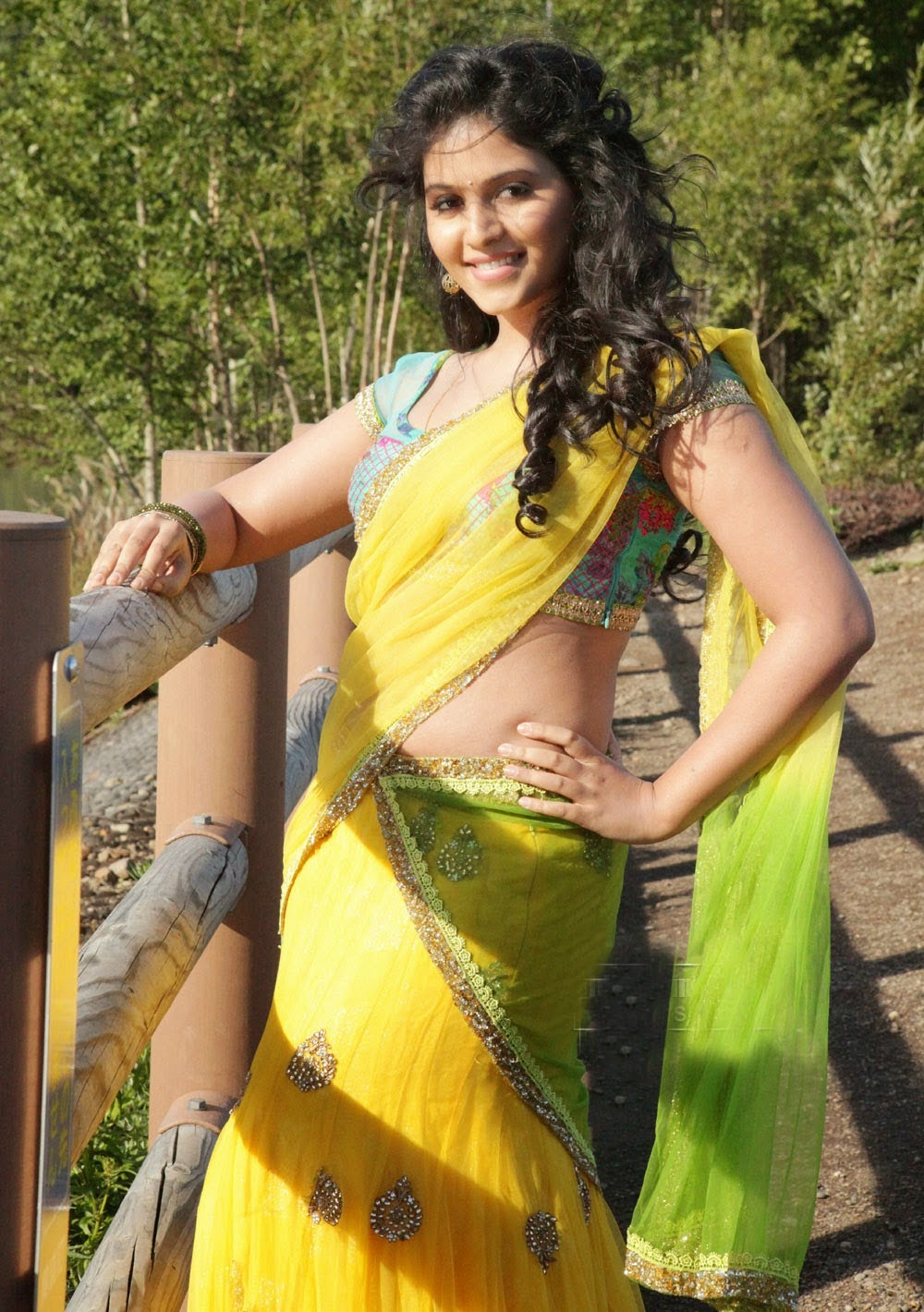 Hot Actress Anjali Low Hip Saree Below Navel Photos South ...