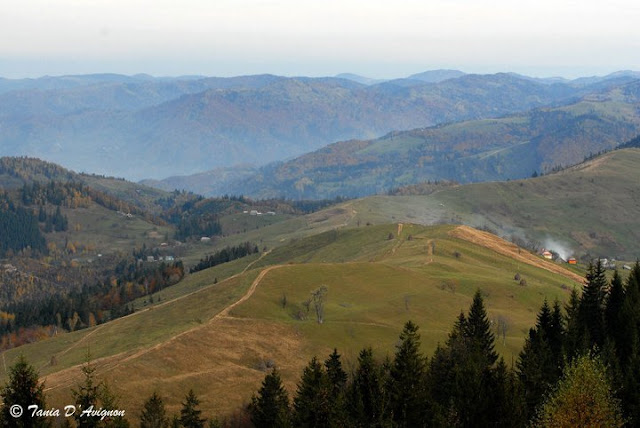 Carpathian Mountains, Ukraine by Tania D'Avignon