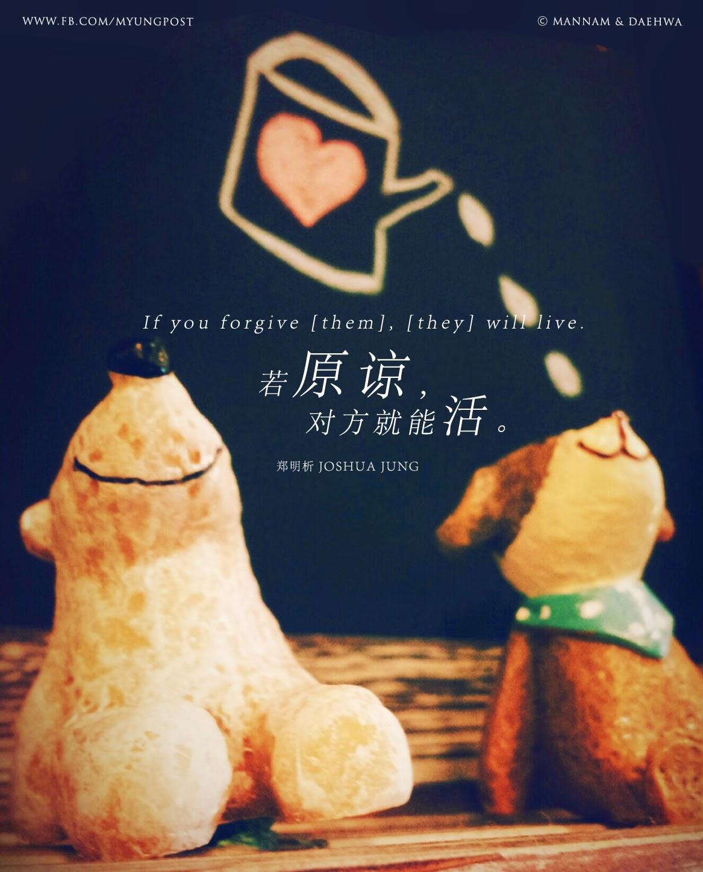 郑明析,摄理,月明洞,原谅,熊,狗,娃娃,爱,活,Joshua Jung, Providence, Wolmyeung Dong, forgive, bear, dog, dolls, love, live