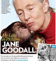 Breve Biografia de Jane Goodall. Mujeres que hacen la historia. Mujeres de la historia. Biografias de Mujeres de la historia. Biografia de Goodall