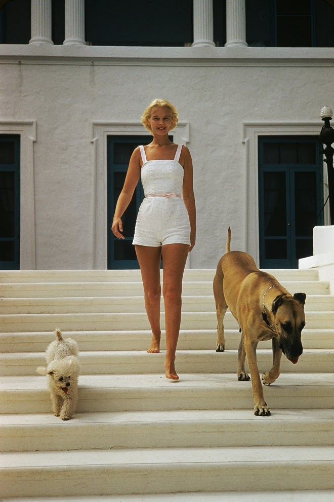 Socialite c z guest at home 1955