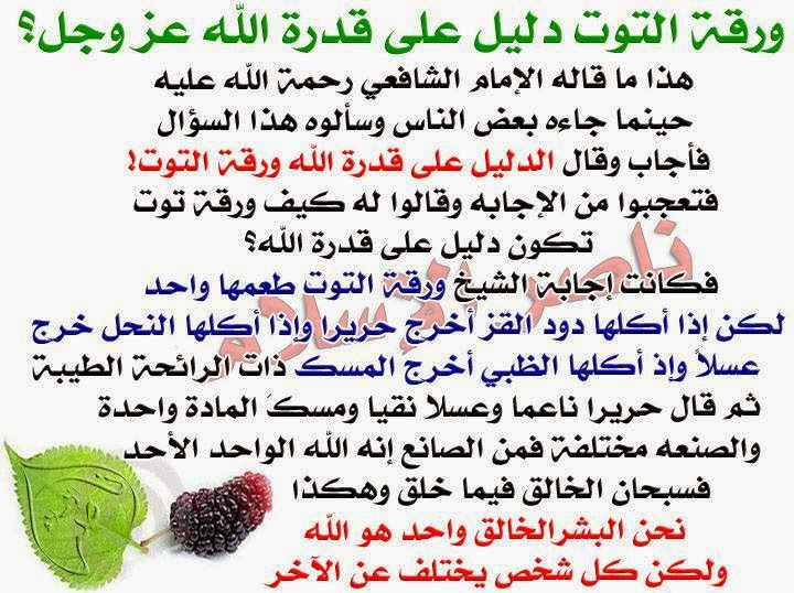 ورقة التوت دليل على قدره الله عز وجل