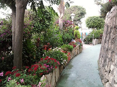 Arte y jardiner a como dise ar un jardin - Plantas para arriates ...
