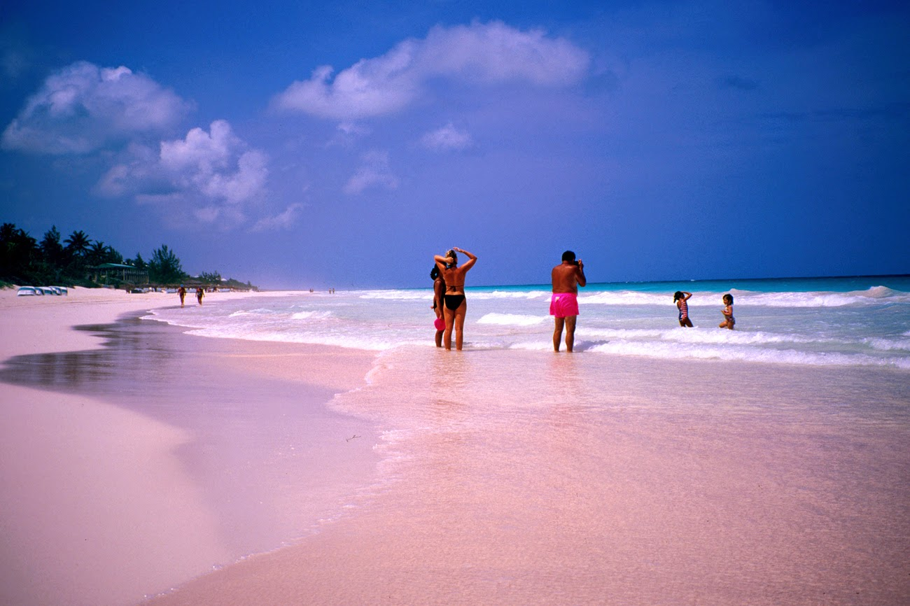 Las mejores fotograf as del mundo pink sand coral beach for Pink sand beaches in the bahamas