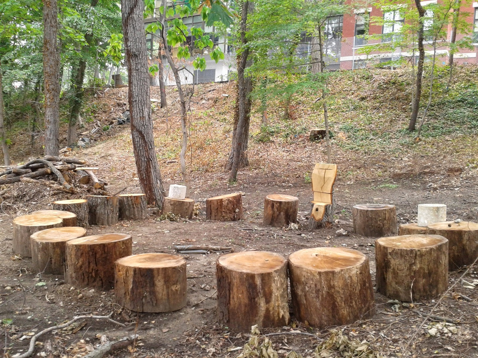 Outdoor Classroom Design Ideas ~ Little scientists with tans outdoor classroom ideas