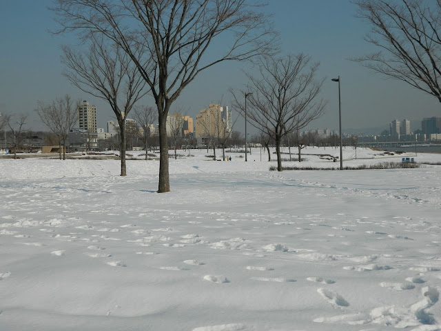 Fields of Snow at the Ttukseom Park at Seoul