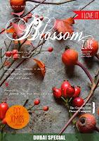 scrivo per Blossomzine