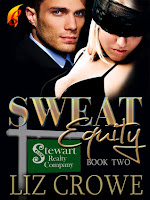 http://www.goodreads.com/book/show/13437616-sweat-equity