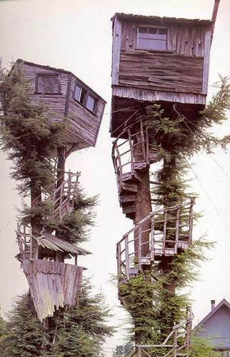 nice Tree Houses