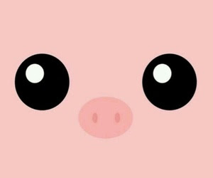 Oink✿