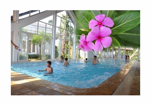 Bể bơi khoáng nóng Tre Nguồn