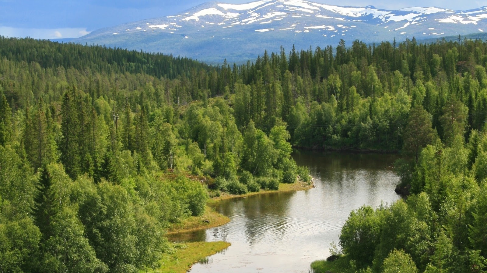 Desktop achtergrond met een landschap met een rivier door de groene