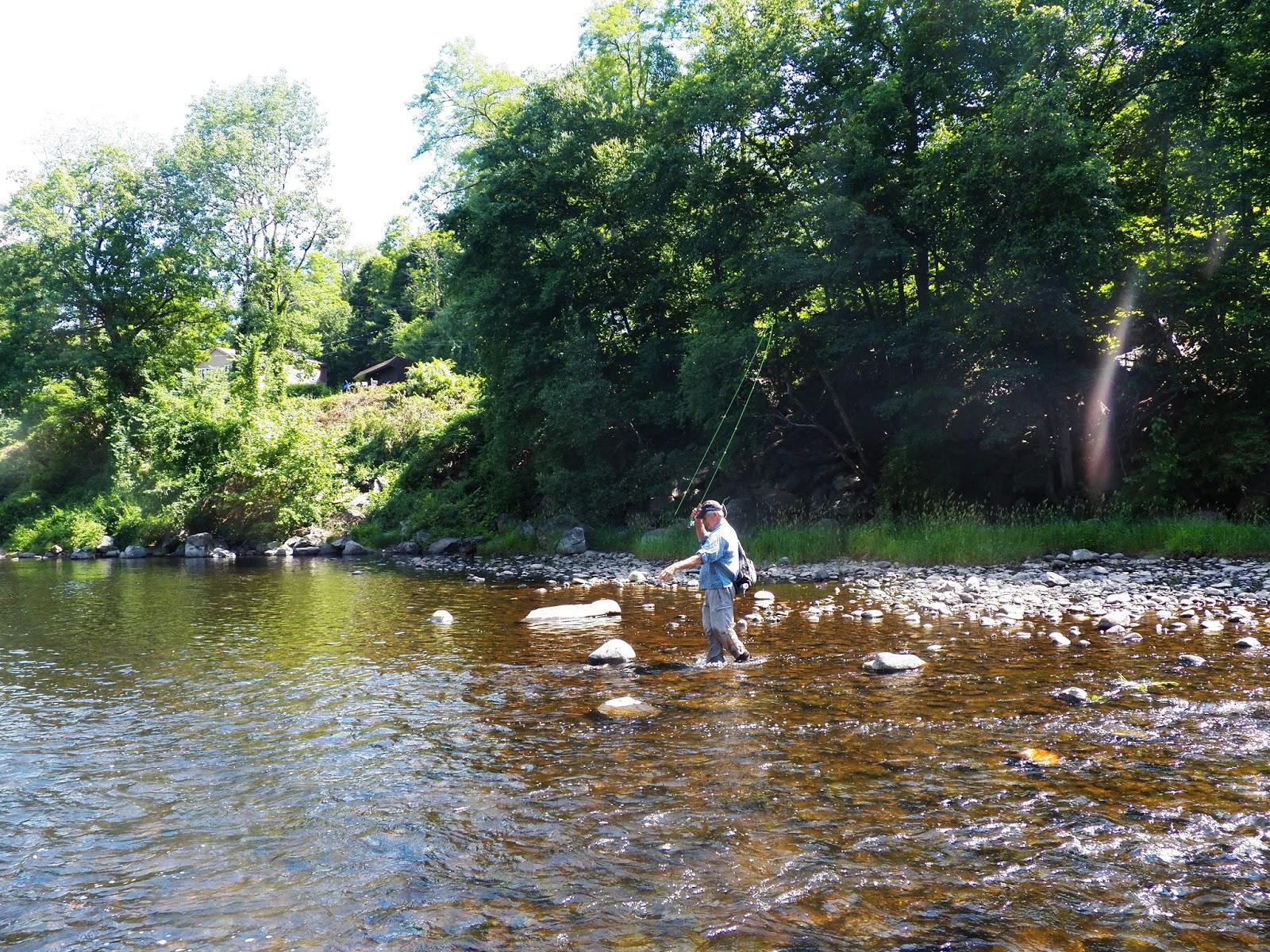 Connecticut fly angler the farmington river and a for Farmington river fishing