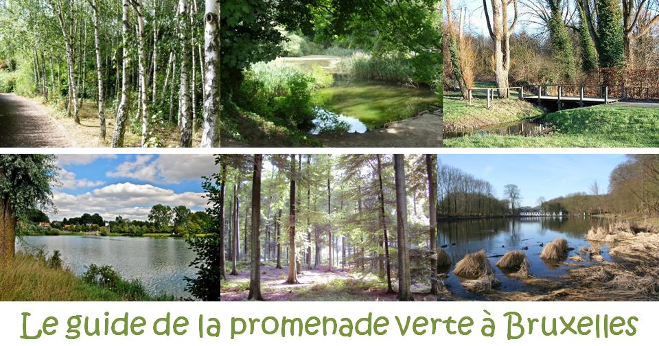 Guide de la promenade verte - Quand Bruxelles se met au vert en 7 étapes - Editions Renaissance du Livre - Julie Galand - Anne Croquet - Bruxelles-Bruxellons