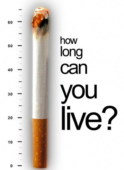 How does smoking affect the human body?
