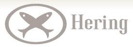 Loja Hering Online