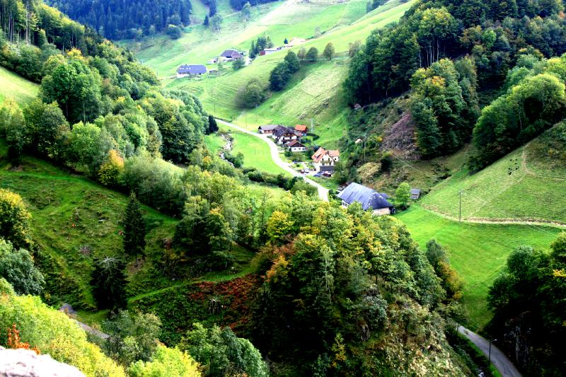 Black Forest Germany 20 Unbelievably Beautiful Places