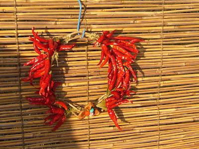 滋賀県・奥びわ湖 鶏足寺の紅葉 とうがらし