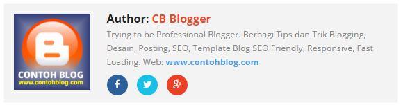 Kotak Profil Blogger