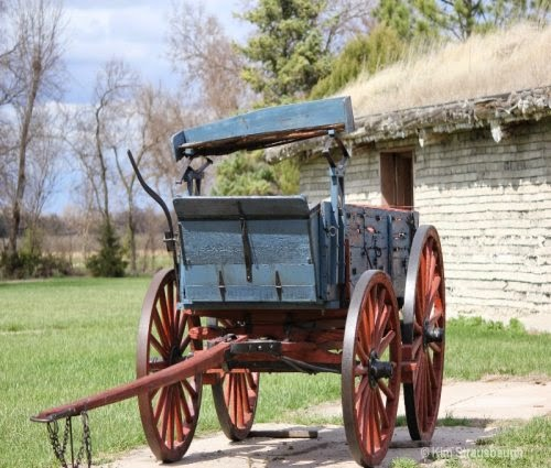 Wagons picture 5