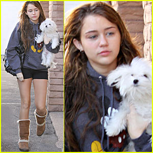 Miley Cyrus Makeup on Hollywood Celebrity  Miley Cyrus With No Makeup Pictures
