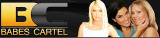 Babes+Cartel Mix 100% Working Passes (Brazzers Mofos Bangbros Naughtyamerica &More) 15/May/2014 Enjoy!