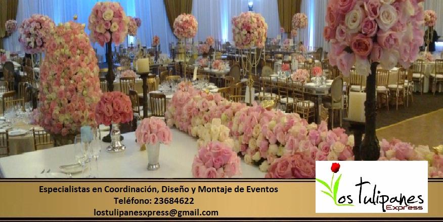 Los Tulipanes Express (Flores, banques, eventos y más ...